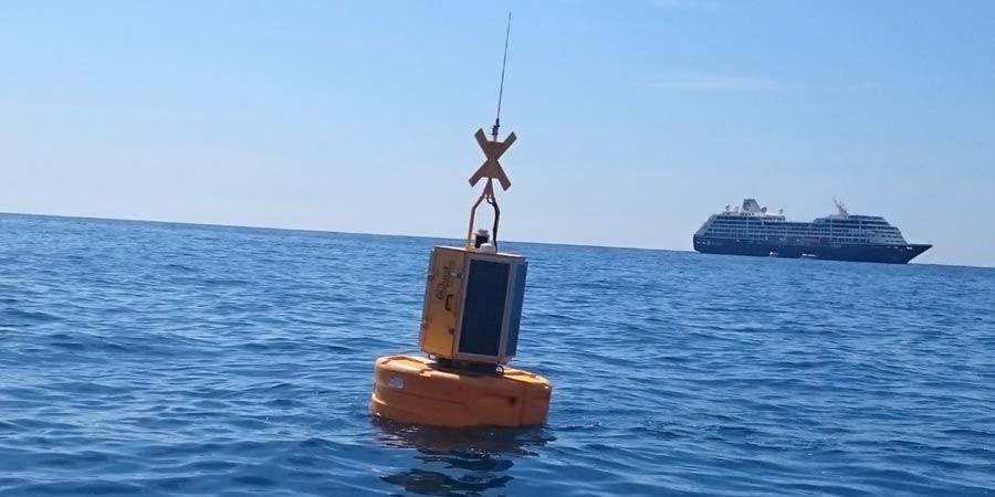Les effets du bruit sous-marin sur la faune marine
