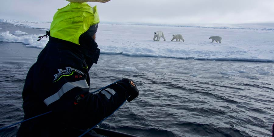 De Biarritz à l'océan Arctique, l'épopée d'un explorateur moderne
